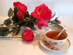 праздник роз